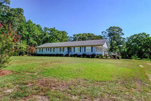 295 Brooks Quinn Road, Magnolia, NC 28453 (MLS #100229015) :: Coldwell Banker Sea Coast Advantage