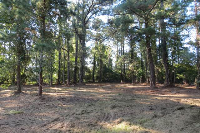1930 White Farm Road, Oriental, NC 28571 (MLS #100232336) :: The Legacy Team