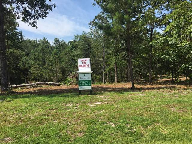 298 Orchard Mill Road, Hampstead, NC 28443 (MLS #100232358) :: Great Moves Realty