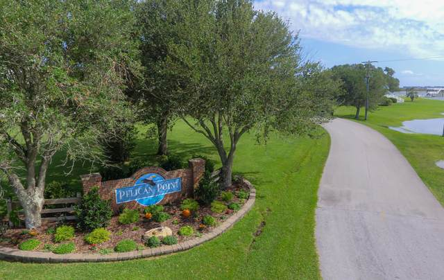 157 Big Hammock Point Road, Sneads Ferry, NC 28460 (MLS #100236852) :: Frost Real Estate Team