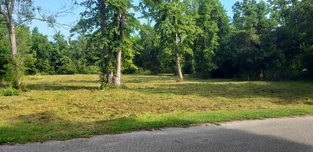 999 Great Oak Drive, Hampstead, NC 28443 (MLS #100239676) :: Stancill Realty Group