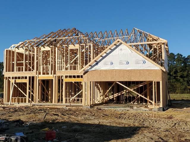 428 Sandcastle Street, Grimesland, NC 27837 (MLS #100243125) :: Barefoot-Chandler & Associates LLC