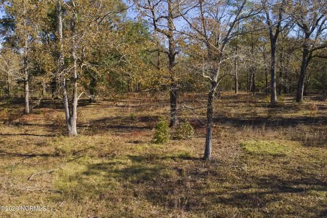 147 Willowbrook Drive, Arapahoe, NC 28510 (MLS #100247448) :: Lynda Haraway Group Real Estate