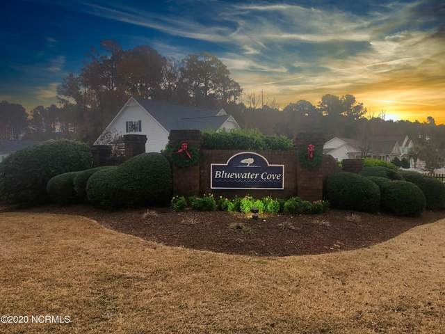 121 White Heron Lane, Swansboro, NC 28584 (MLS #100248636) :: CENTURY 21 Sweyer & Associates
