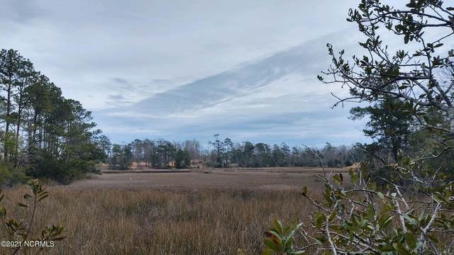 158 Beagle Drive, Hubert, NC 28539 (MLS #100253256) :: Great Moves Realty