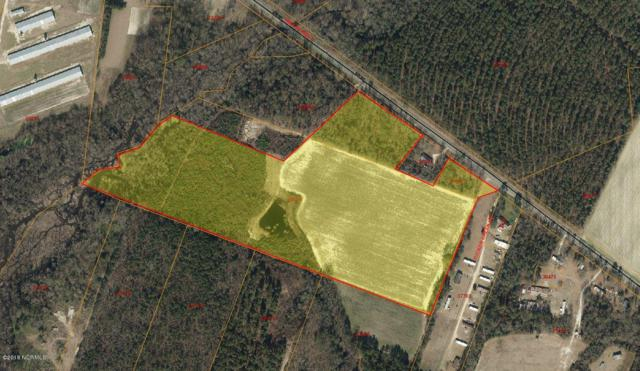 29+- Acres Hwy 55 W, Seven Springs, NC 28578 (MLS #50121301) :: The Keith Beatty Team