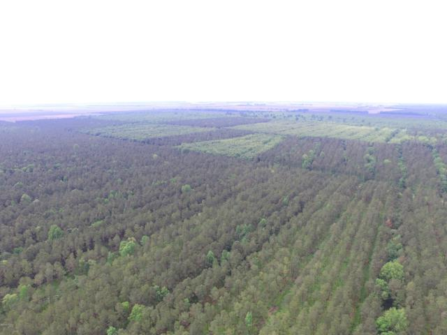 Off State Rd 1621 Off, Pantego, NC 27860 (MLS #100018796) :: The Keith Beatty Team