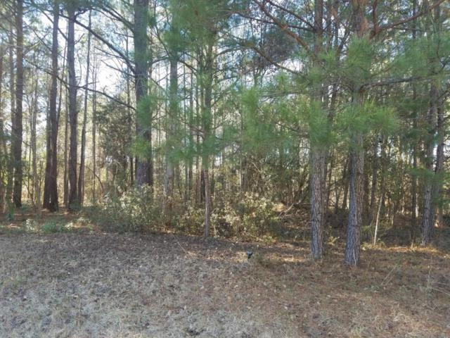 204 Winding Creek Road, Rocky Point, NC 28457 (MLS #100041384) :: The Oceanaire Realty