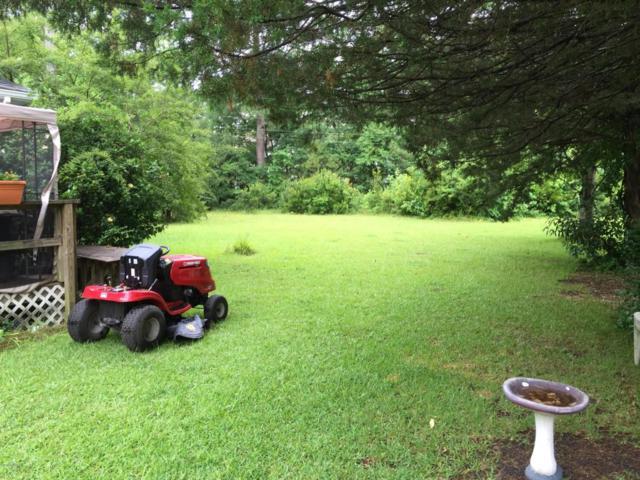 176 Steep Hill Drive, Swansboro, NC 28584 (MLS #100042790) :: Century 21 Sweyer & Associates