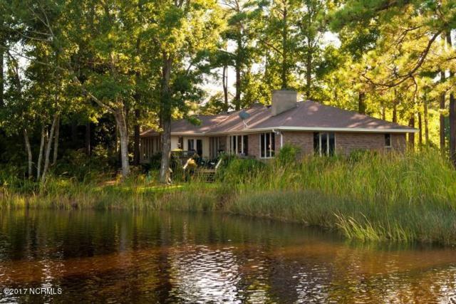 100 Pelican Circle, Oriental, NC 28571 (MLS #100057592) :: Century 21 Sweyer & Associates
