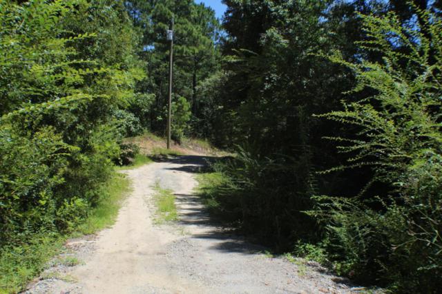 168 Dixon Road, Holly Ridge, NC 28445 (MLS #100075272) :: Century 21 Sweyer & Associates
