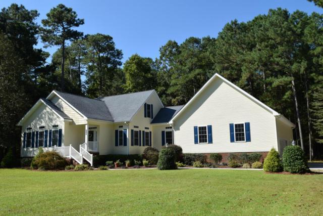 110 Hidden Harbor Lane, Beaufort, NC 28516 (MLS #100084024) :: David Cummings Real Estate Team