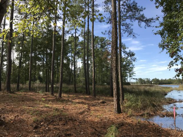 Lot 54 Shipwreck Drive, Belhaven, NC 27810 (MLS #100086494) :: RE/MAX Essential