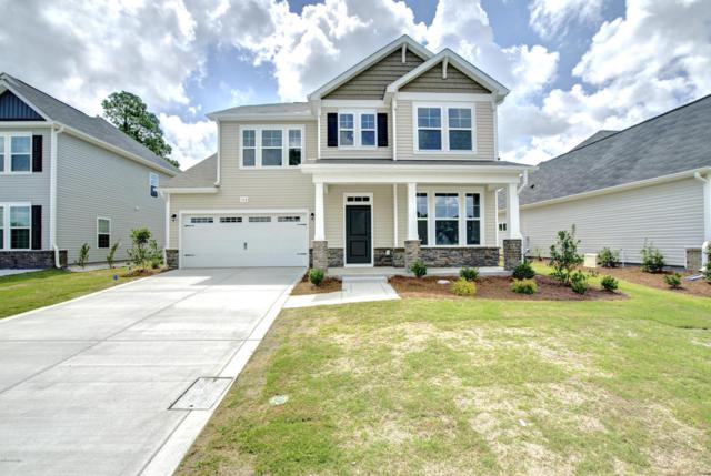 556 Green Heron Drive, Wilmington, NC 28411 (MLS #100097955) :: RE/MAX Essential