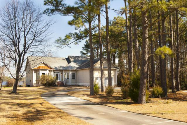 104 Goodwinds Drive, Oriental, NC 28571 (MLS #100100033) :: RE/MAX Essential