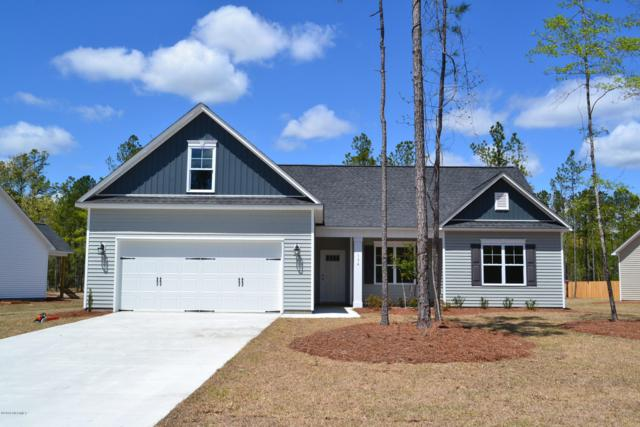 245 Bronze Drive, Rocky Point, NC 28457 (MLS #100101960) :: RE/MAX Essential