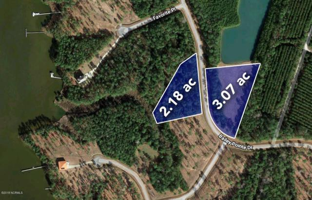 Lot 99/99a Bailey Pointe Drive, Belhaven, NC 27810 (MLS #100107716) :: Vance Young and Associates