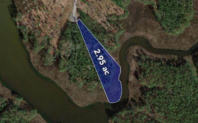 Lot 9 Bradford Court, Belhaven, NC 27810 (MLS #100107793) :: Coldwell Banker Sea Coast Advantage