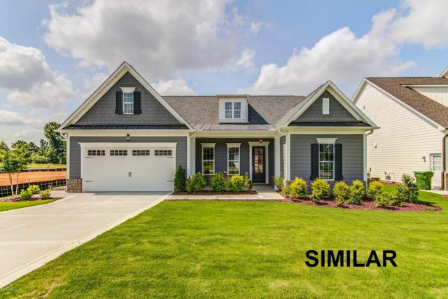 1225 Waterway Court, Wilmington, NC 28411 (MLS #100122189) :: RE/MAX Essential