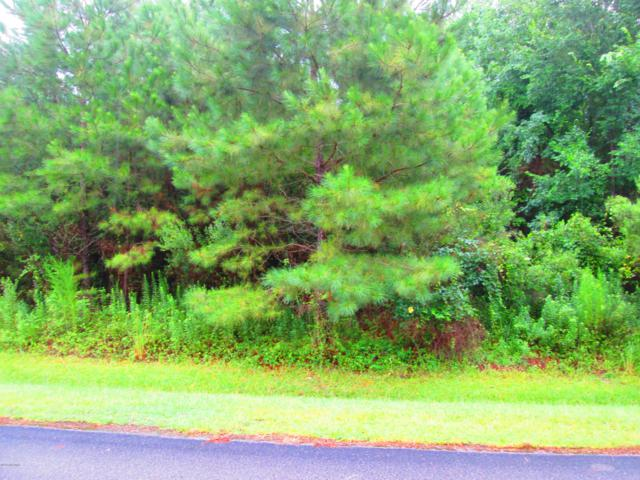 Lot 70 Eagle Trace Drive, Blounts Creek, NC 27814 (MLS #100123968) :: The Cheek Team