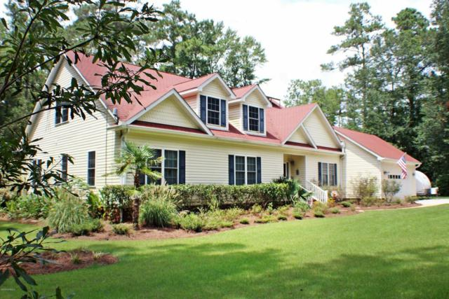 413 Whig Way, Currie, NC 28435 (MLS #100129934) :: RE/MAX Essential