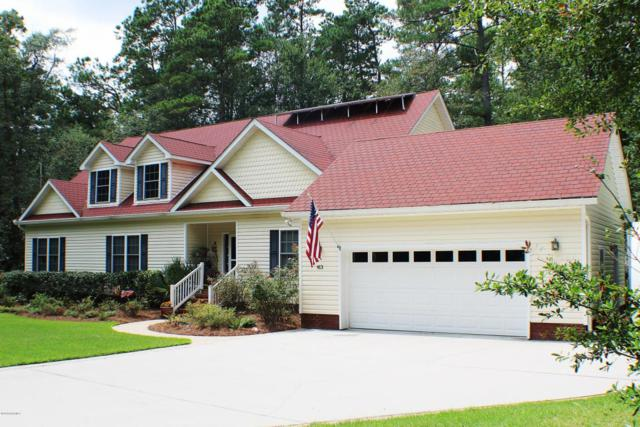 413 Whig Way, Currie, NC 28435 (MLS #100129938) :: RE/MAX Essential
