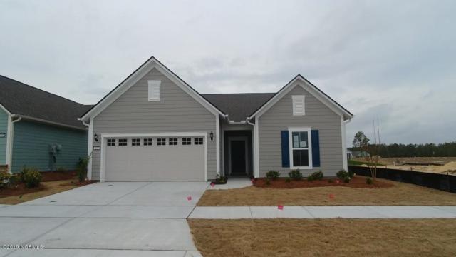 807 Broomsedge Terrace, Wilmington, NC 28412 (MLS #100133895) :: Vance Young and Associates