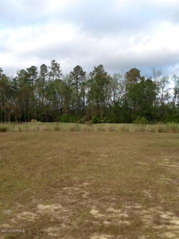 2026 Colony Pines Drive, Leland, NC 28451 (MLS #100138762) :: Donna & Team New Bern
