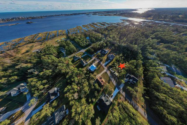 250 Royal Tern Drive, Sneads Ferry, NC 28460 (MLS #100139914) :: Century 21 Sweyer & Associates