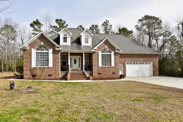 811 Royal Tern Drive, Hampstead, NC 28443 (MLS #100145143) :: Courtney Carter Homes