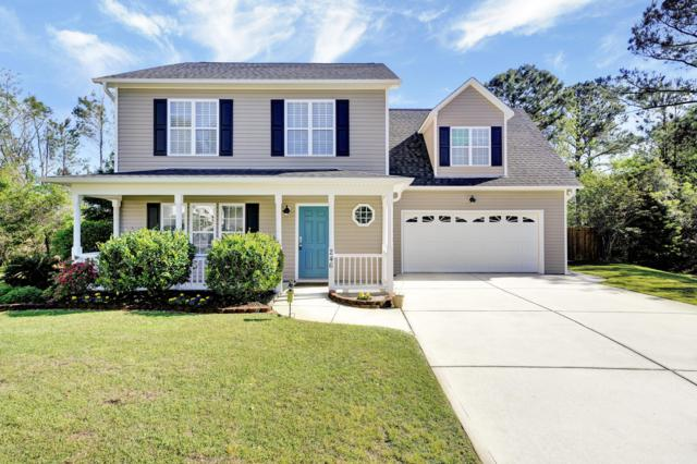 246 Ray Court, Leland, NC 28451 (MLS #100159237) :: Vance Young and Associates