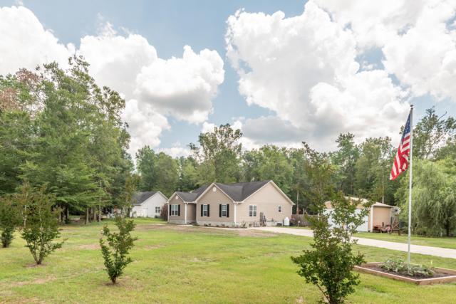 186 Old Beechtree Lane, Jacksonville, NC 28540 (MLS #100170807) :: Century 21 Sweyer & Associates