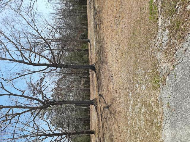 Lot 6 Pine Village Drive, Rocky Point, NC 28457 (MLS #100207983) :: RE/MAX Essential