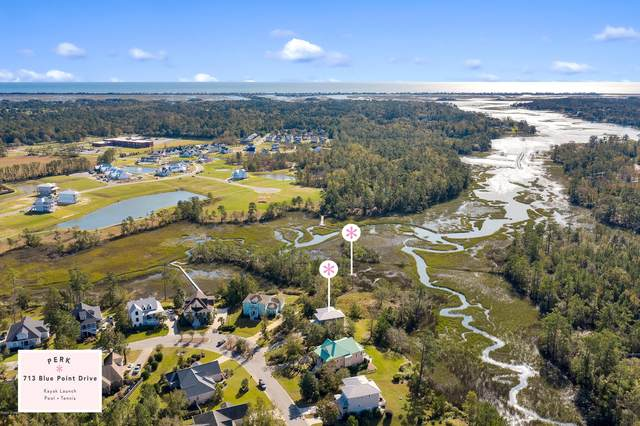 713 Blue Point Drive, Wilmington, NC 28411 (MLS #100243717) :: Carolina Elite Properties LHR