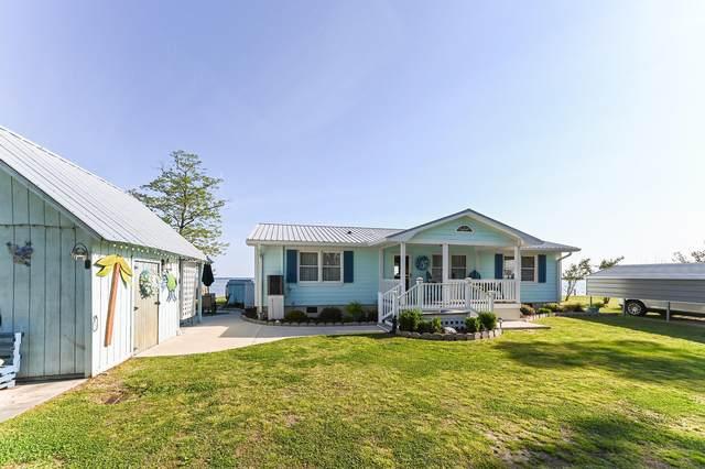 419 Pungo Shores Drive, Belhaven, NC 27810 (MLS #100266444) :: Aspyre Realty Group | Coldwell Banker Sea Coast Advantage