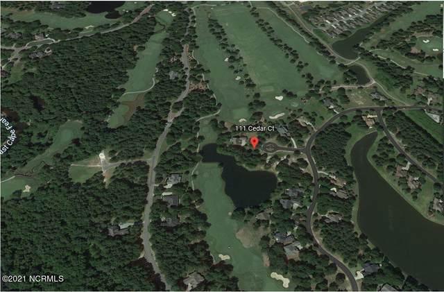 111 Cedar Court, Wallace, NC 28466 (MLS #100292620) :: Donna & Team New Bern