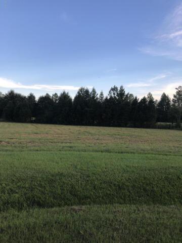 4440 Alan Place, Farmville, NC 27828 (MLS #100133659) :: The Pistol Tingen Team- Berkshire Hathaway HomeServices Prime Properties