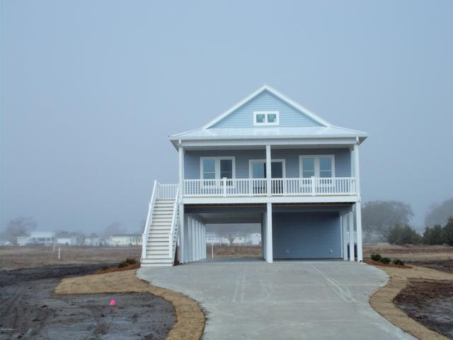 276 Live Oak Road, Newport, NC 28570 (MLS #100144179) :: Berkshire Hathaway HomeServices Prime Properties