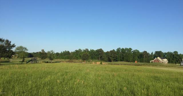 Lot #49 Timberlake Drive, Clinton, NC 28328 (MLS #100164520) :: Castro Real Estate Team