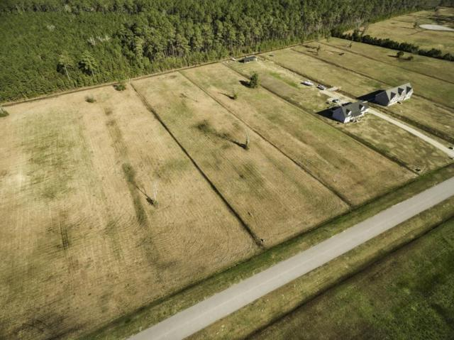203 Mayflower Drive, Newport, NC 28570 (MLS #11505106) :: Century 21 Sweyer & Associates