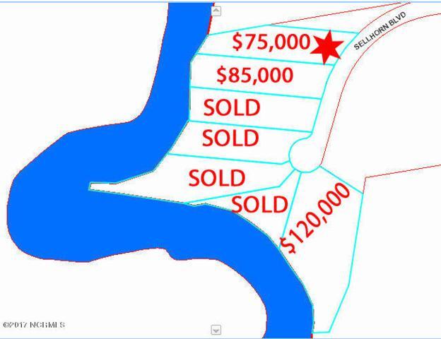 382 Sellhorn Boulevard, New Bern, NC 28562 (MLS #90102943) :: Century 21 Sweyer & Associates