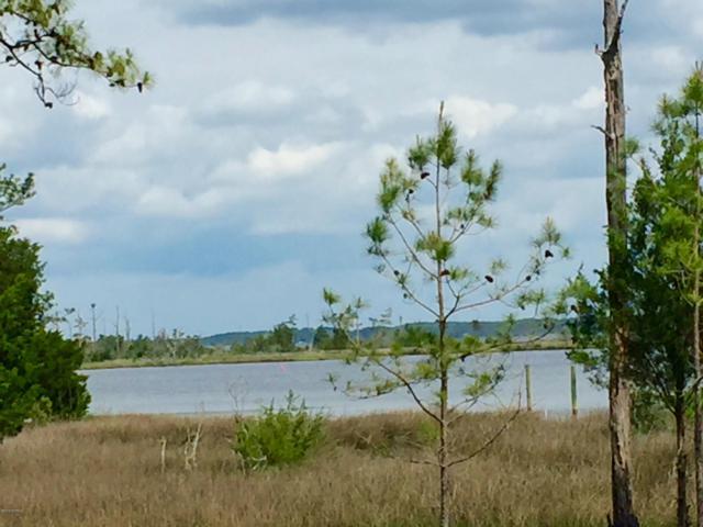 261 & 301 Cabin Creek Road, Merritt, NC 28556 (MLS #100023009) :: Coldwell Banker Sea Coast Advantage
