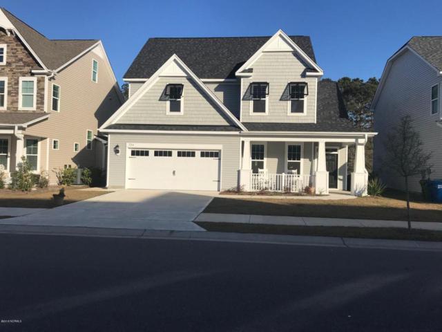724 Antler Drive, Wilmington, NC 28409 (MLS #100088509) :: Harrison Dorn Realty