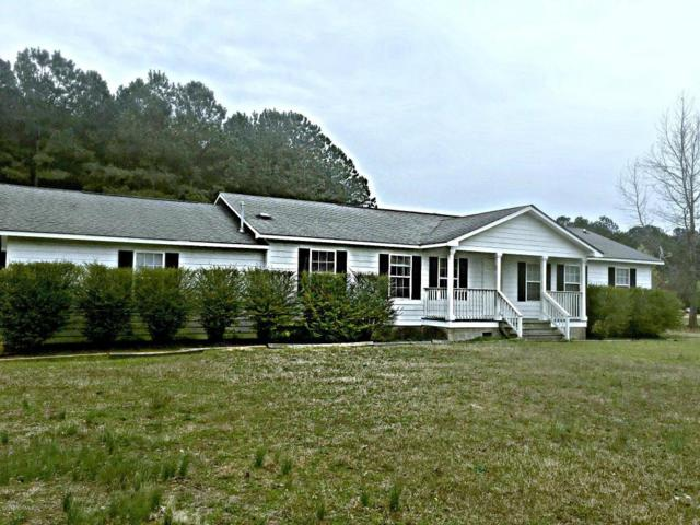 378 Perry Miller Road, Kenansville, NC 28349 (MLS #100088887) :: David Cummings Real Estate Team