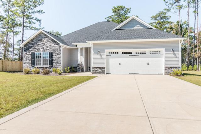 315 Little Egret Lane, Swansboro, NC 28584 (MLS #100030576) :: Century 21 Sweyer & Associates