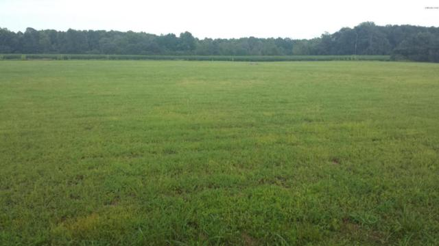 3573 Cobb Dail Road, Farmville, NC 27828 (MLS #100044780) :: Century 21 Sweyer & Associates