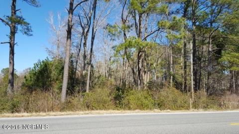 1107 Green Pasture Lane, Calabash, NC 28467 (MLS #100002976) :: Century 21 Sweyer & Associates