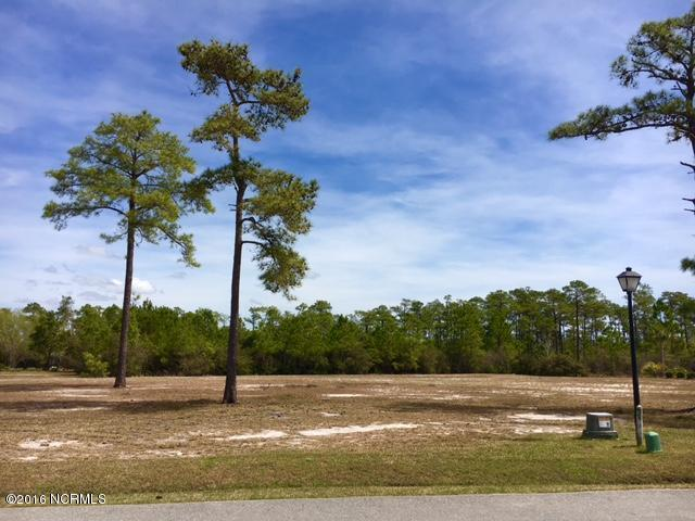 4145 Skeffington Court, Southport, NC 28461 (MLS #100006742) :: Century 21 Sweyer & Associates