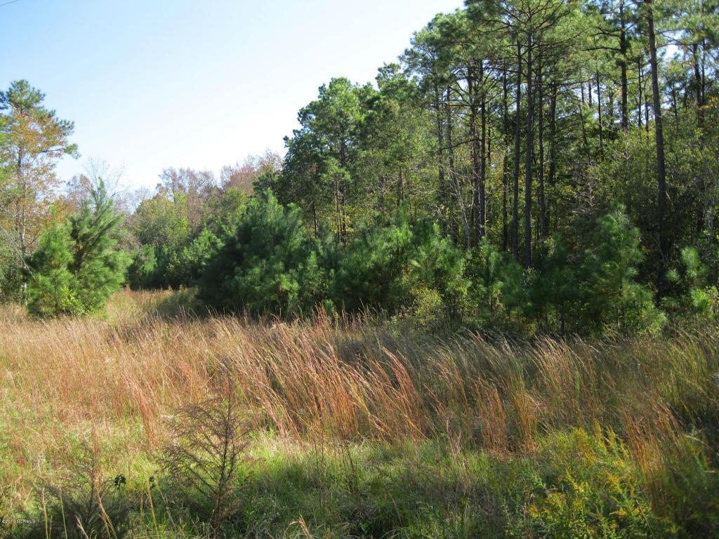 6a Island Creek Road, Rocky Point, NC 28457 (MLS #100008002) :: Century 21 Sweyer & Associates