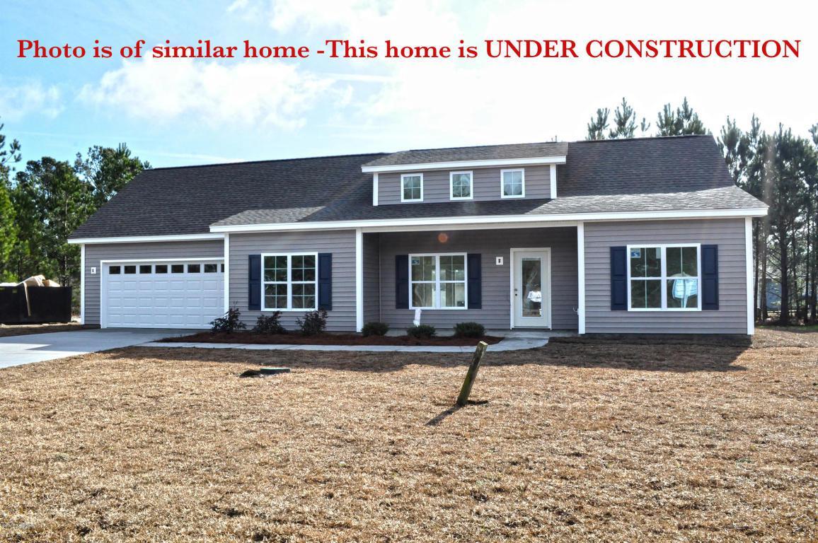 79 Carol Lynn Drive NE, Leland, NC 28451 (MLS #100009069) :: Century 21 Sweyer & Associates